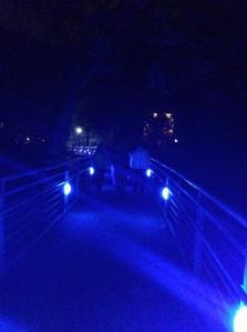 Reed College bridge
